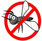 У нас нет комаров !!